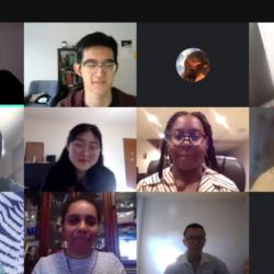 Fellows and staff during our first virtual meeting